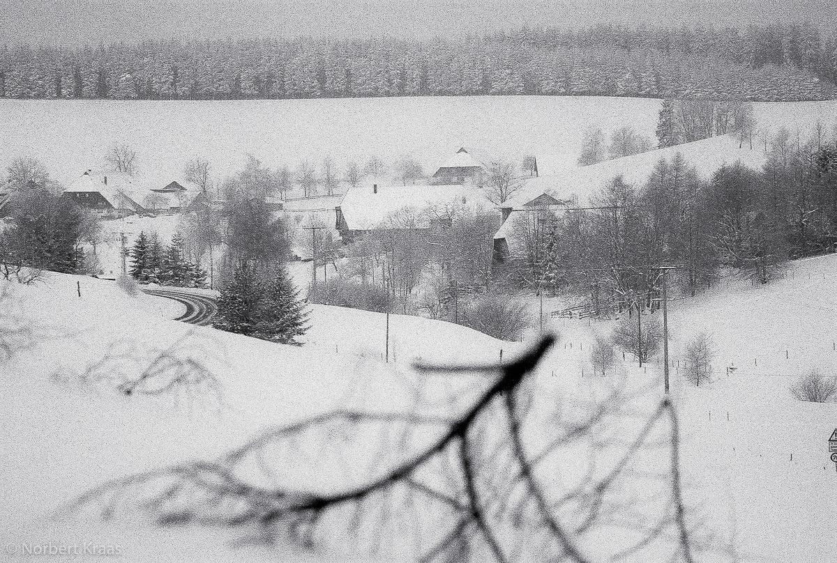 Winterlandschaft bei St. Georgen im Schwarzwald, 2.2.2005, noch analog fotografiert