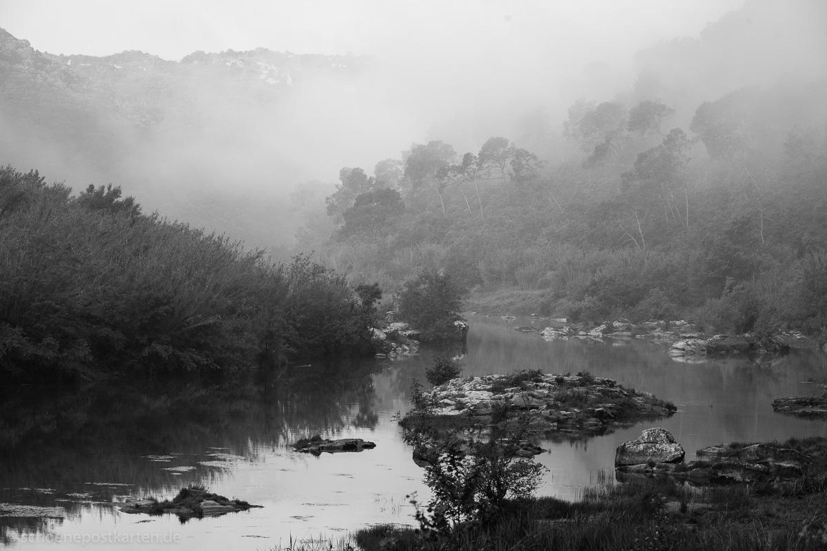 Im Nebel der Gerüchte verbirgt sich die Wahrheit um den Selbstmord des Teemeisters Rikyū