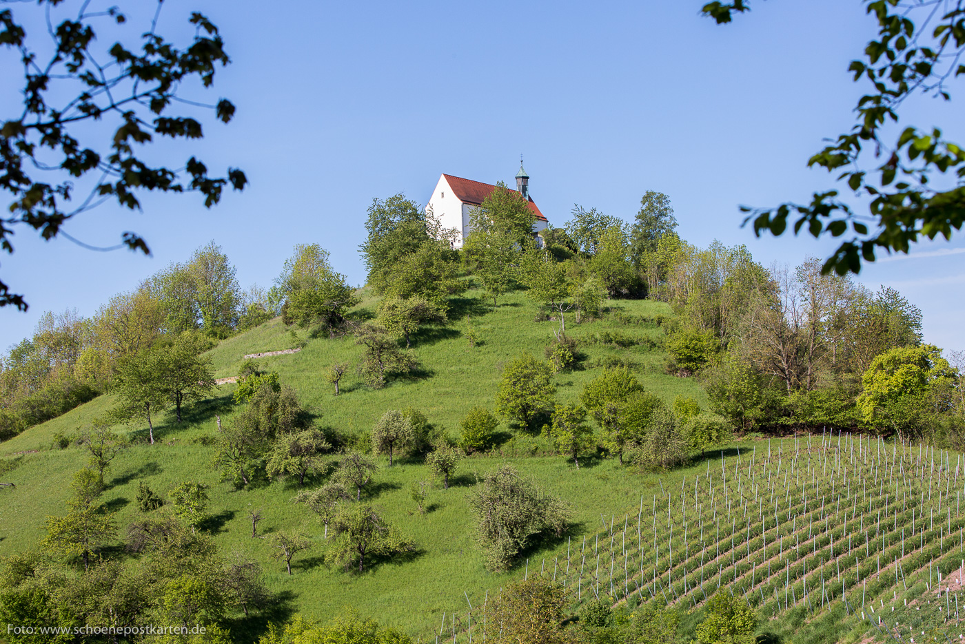 Wurmlinger Kapelle bei Tübingen. Foto: www.schoenepostkarten.de