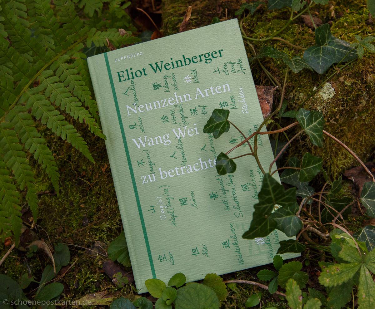 Eliot Weinberger: Neunzehn Arten Wang Wei zu betrachten. Buchbesprechung