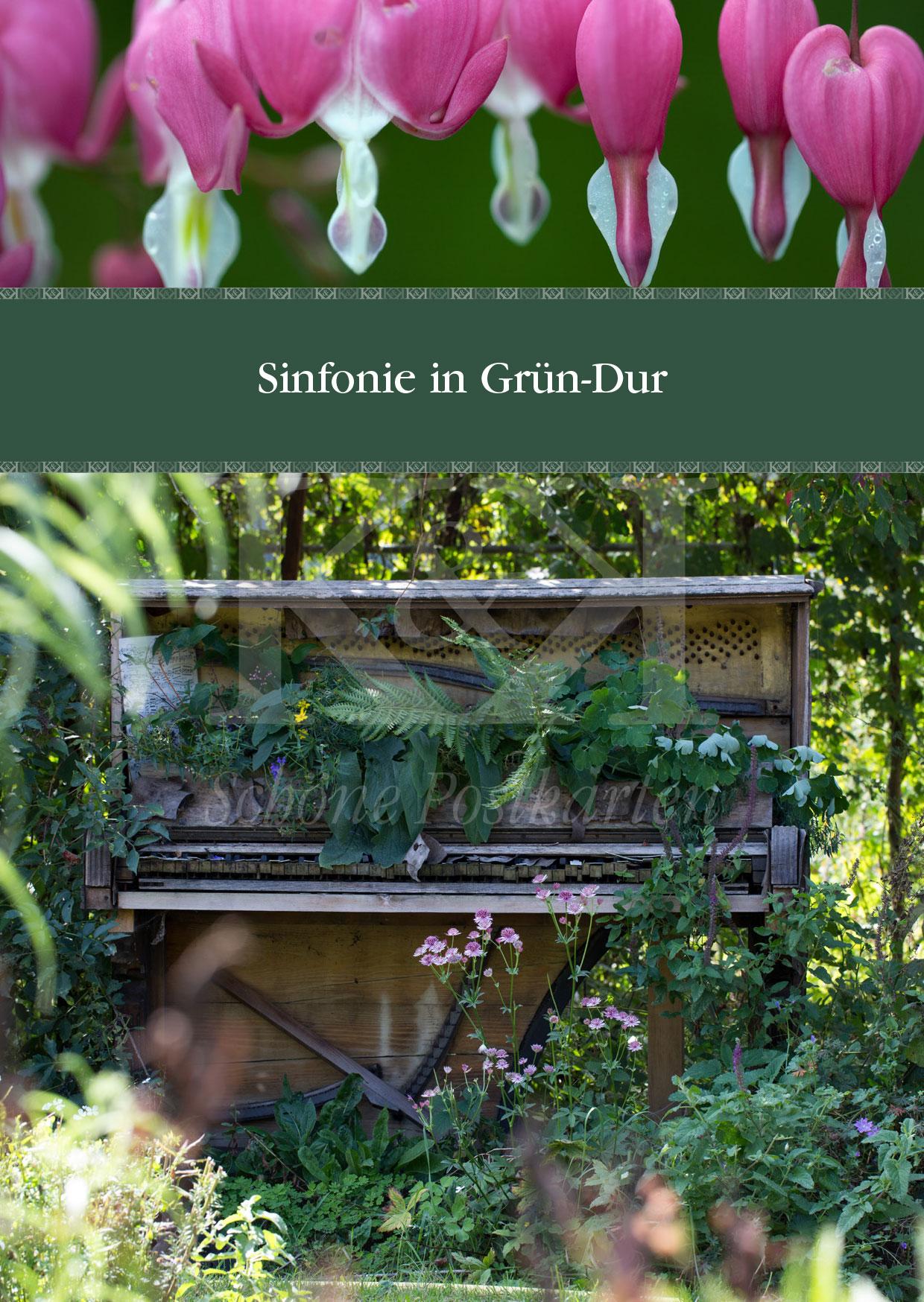 Schöne Postkarte Nr. 12 · Sinfonie in Grün-Dur · © Schöne Postkarten