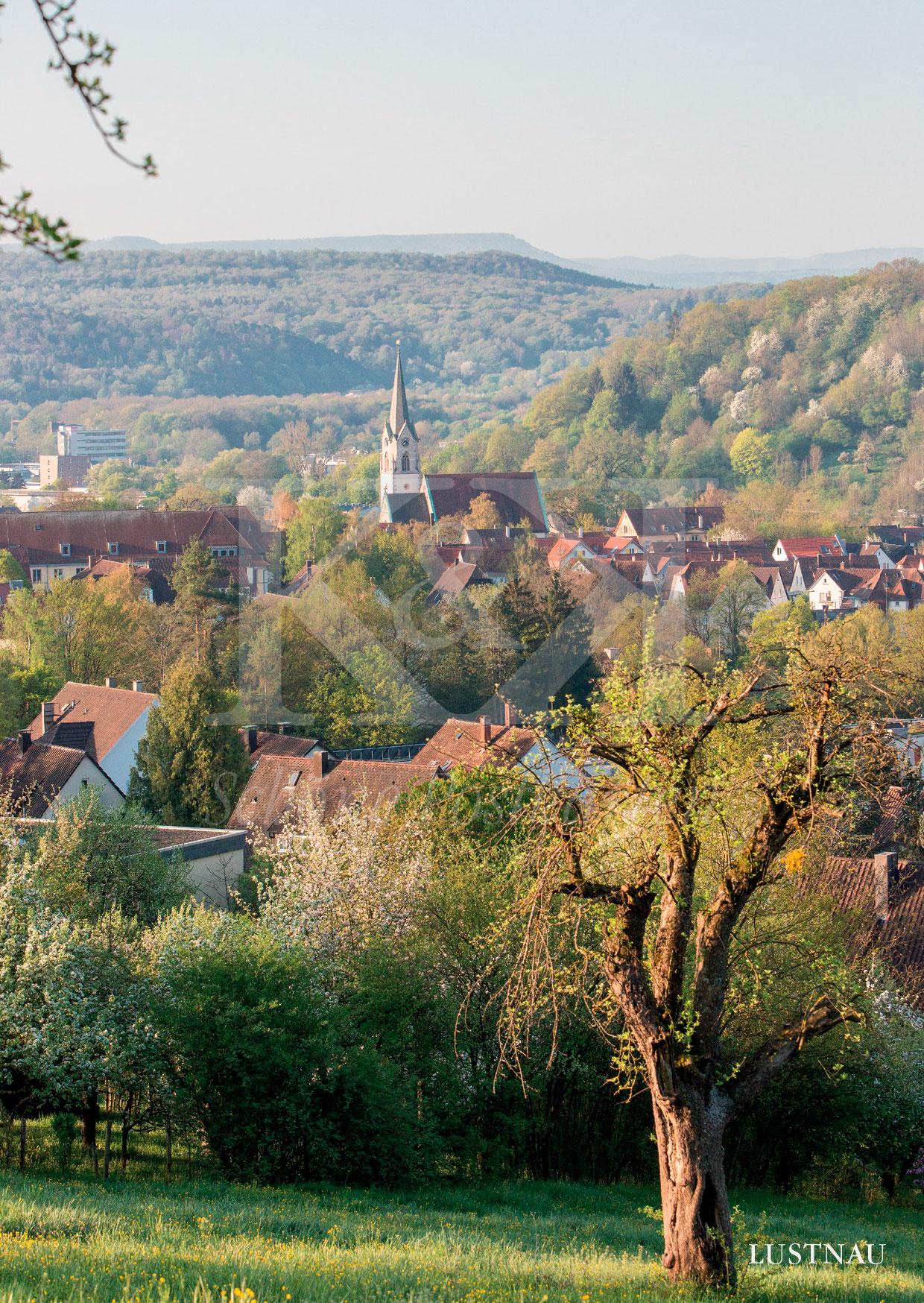 Schöne Postkarte Nr. 120 · Blick auf Lustnau, Stadtteil von Tübingen · © www.schoenepostkarten.de
