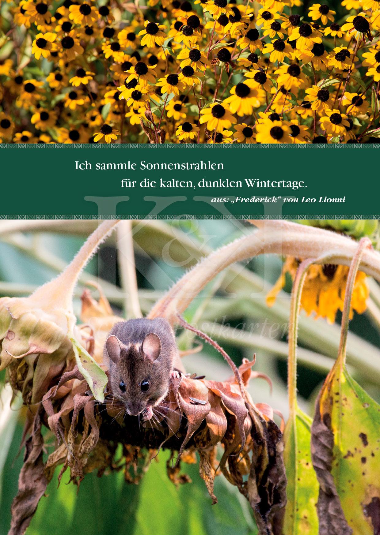 Schöne Postkarte Nr. 21 · Wohl dem, der für die dunklen Tage vorgesorgt hat · © www.schoenepostkarten.de