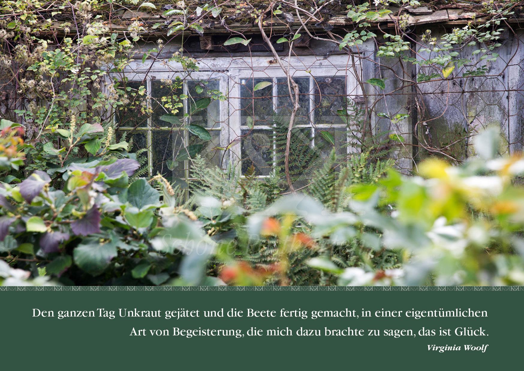 """""""Den ganzen Tag Unkraut gejätet [...]"""" Virginia Woolf, Schöne Postkarte Nr. 2 © www.schoenepostkarten.de"""