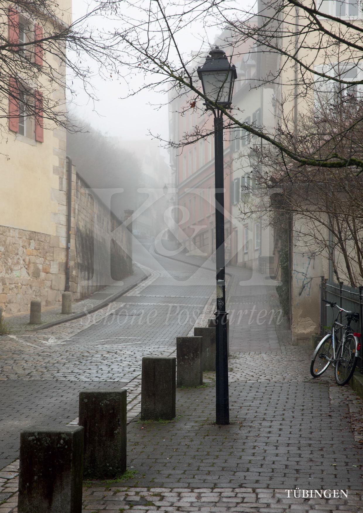 Melancholische Schönheit: Neckarhalde, Tübingen