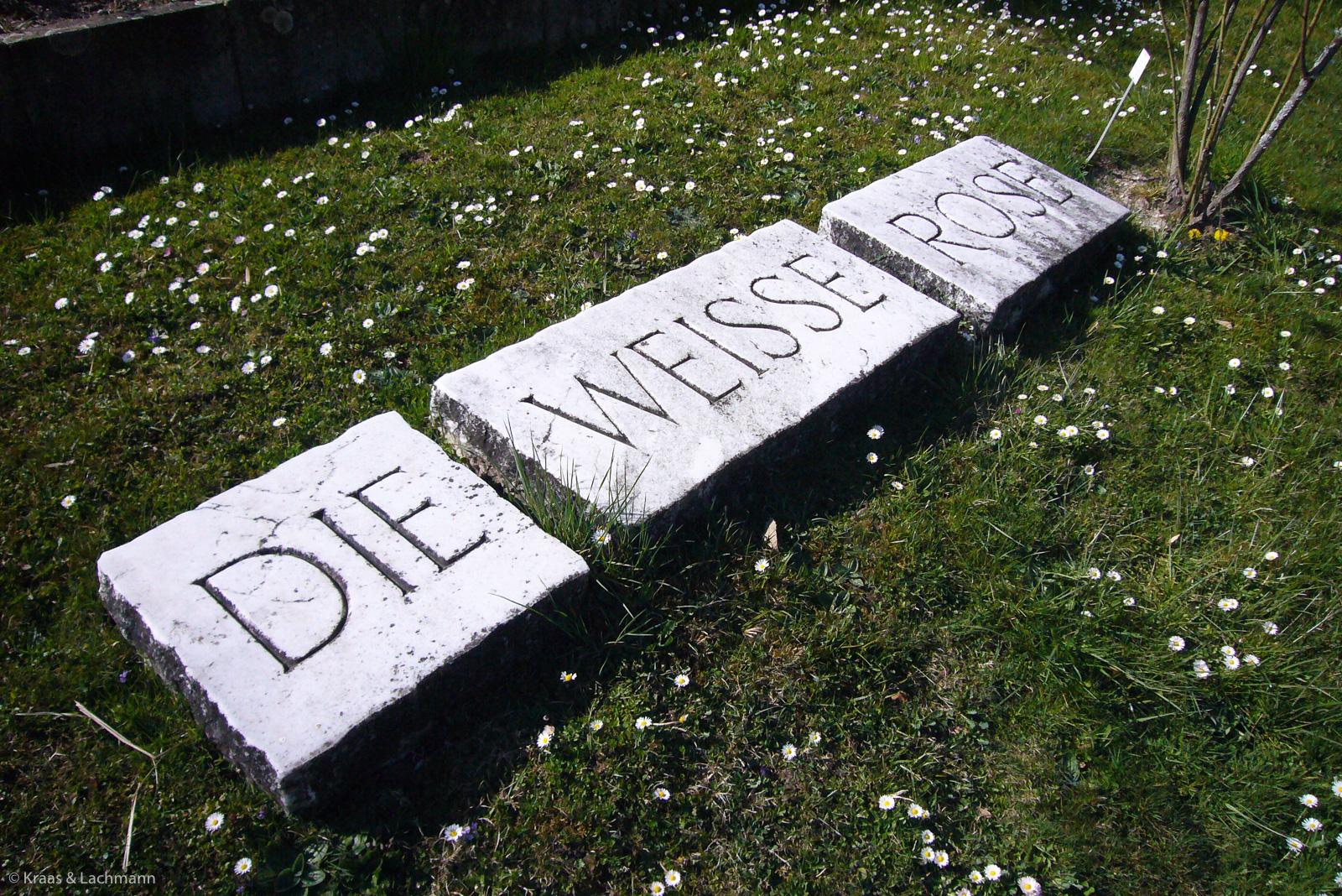 """In Stein gemeißeltes Epigramm """"Die weiße Rose"""" von Karl Poralla im Botanischen Garten in Tübingen"""