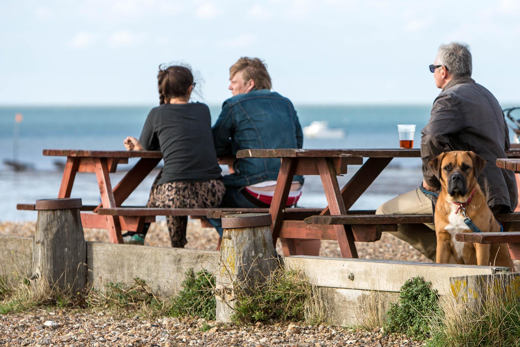 """""""Warum starren die Zweibeiner eigentlich alle so gern aufs Meer raus?"""" Foto: Norbert Kraas"""